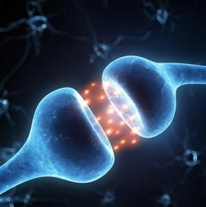 Hogyan javítható az agy teljesítménye?