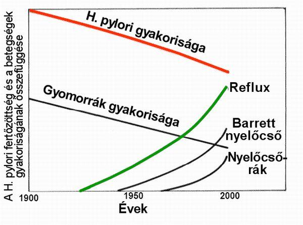 baktériumok nem gyomor h pylori diétahan